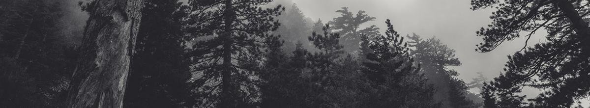 Natural Darkness